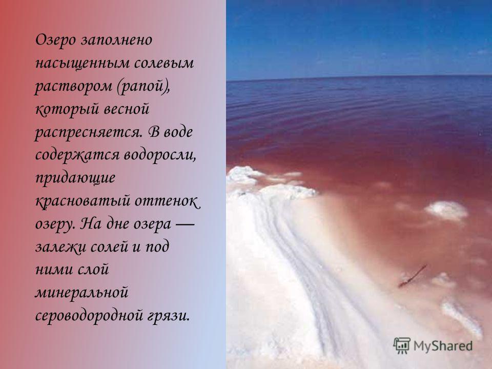 Озеро заполнено насыщенным солевым раствором (рапой), который весной распресняется. В воде содержатся водоросли, придающие красноватый оттенок озеру. На дне озера залежи солей и под ними слой минеральной сероводородной грязи.