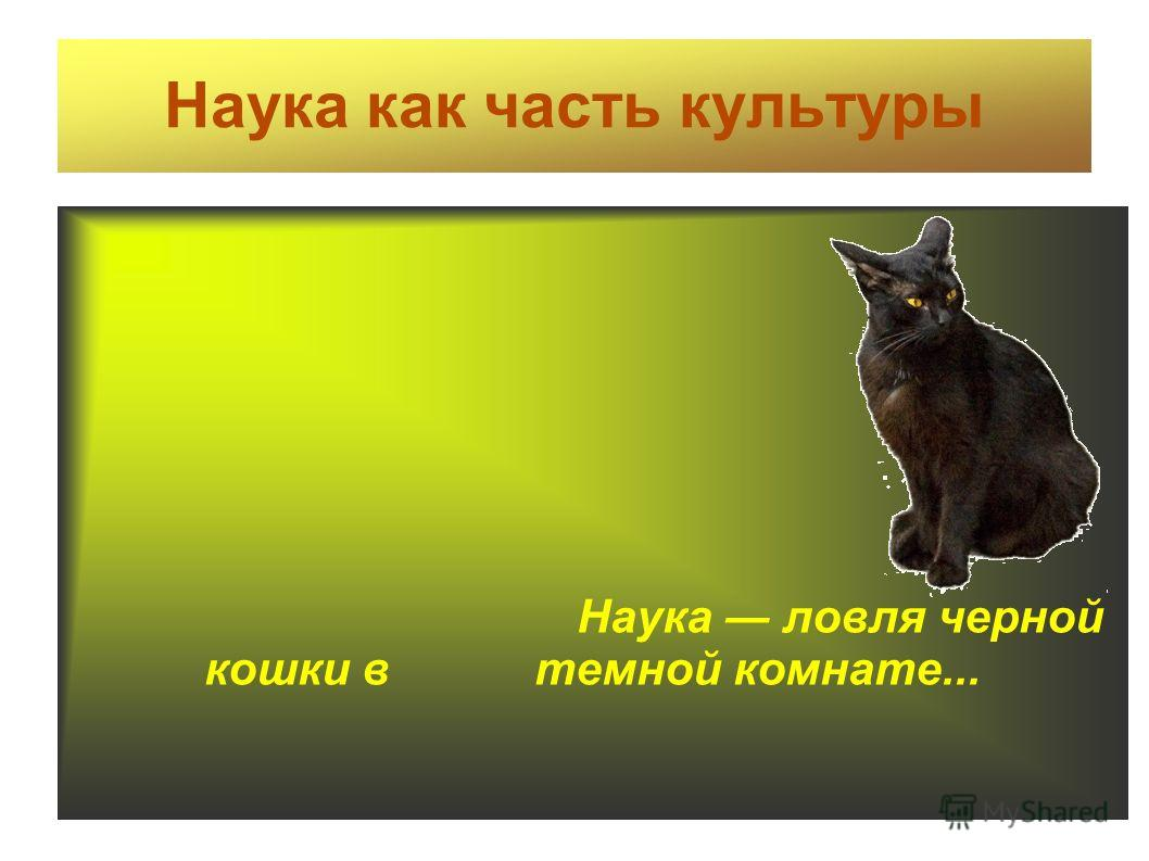 Наука как часть культуры Наука ловля черной кошки в темной комнате...