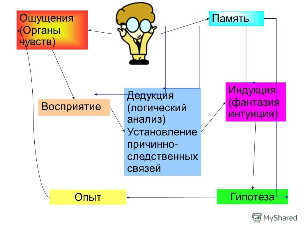 Ощущения (Органы чувств) Дедукция (логический анализ) Установление причинно- следственных связей Память Опыт Гипотеза Индукция (фантазия интуиция) Восприятие