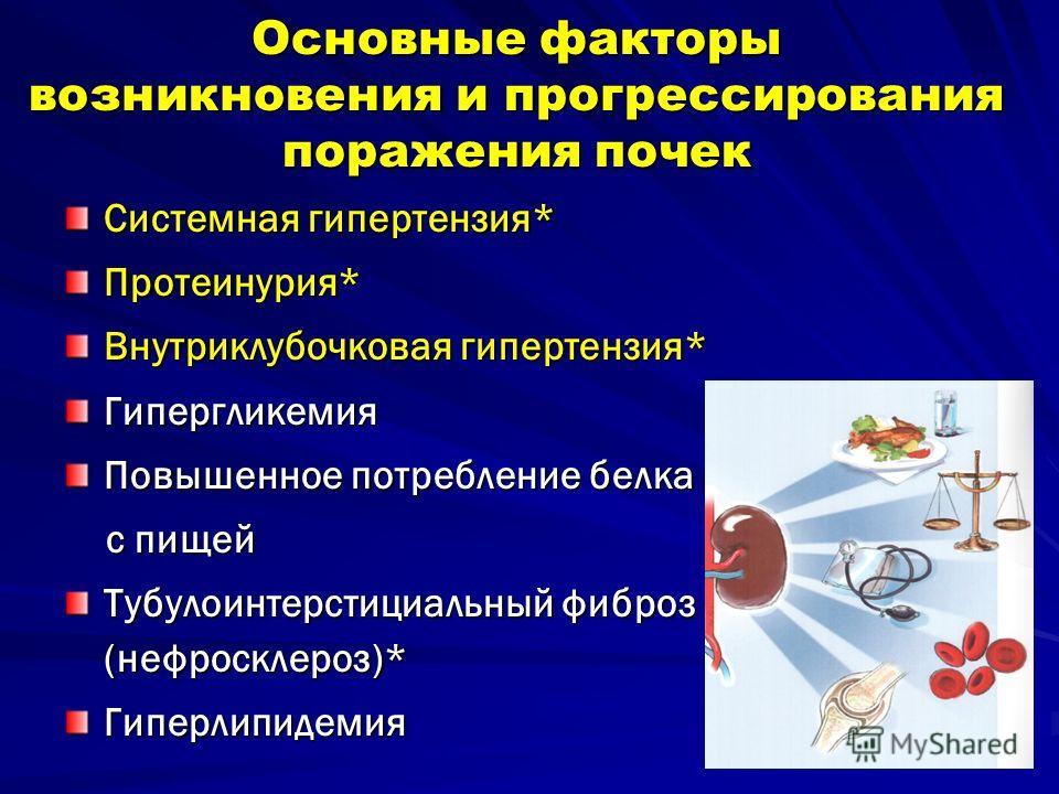 Основные факторы возникновения и прогрессирования поражения почек Системная гипертензия* Протеинурия* Внутриклубочковая гипертензия* Гипергликемия Повышенное потребление белка с пищей с пищей Тубулоинтерстициальный фиброз (нефросклероз)* Гиперлипидем