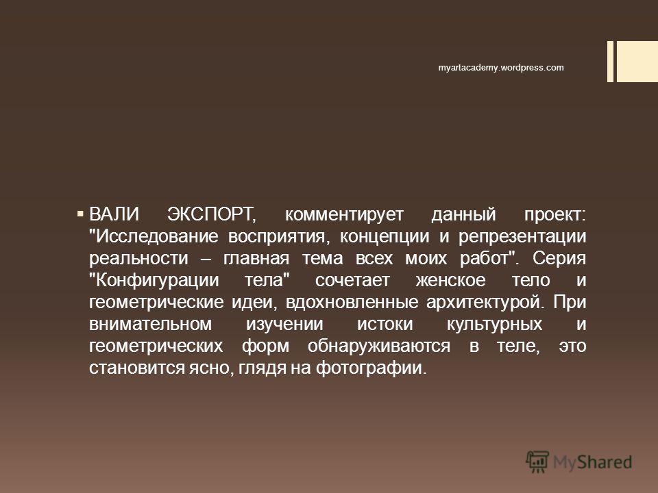 ВАЛИ ЭКСПОРТ, комментирует данный проект:
