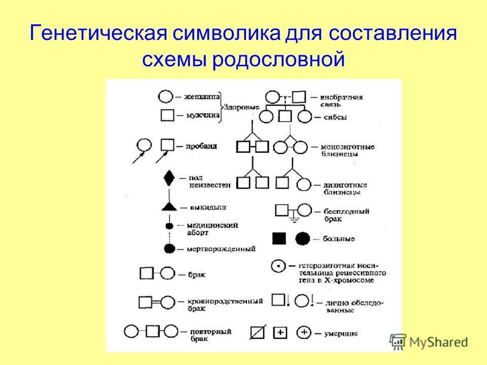 Генетическая символика для составления схемы родословной