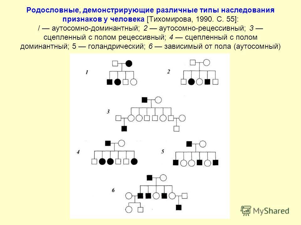 Родословные, демонстрирующие различные типы наследования признаков у человека [Тихомирова, 1990. С. 55]: / аутосомно-доминантный; 2 аутосомно-рецессивный; 3 сцепленный с полом рецессивный; 4 сцепленный с полом доминантный; 5 голандрический; 6 зависим