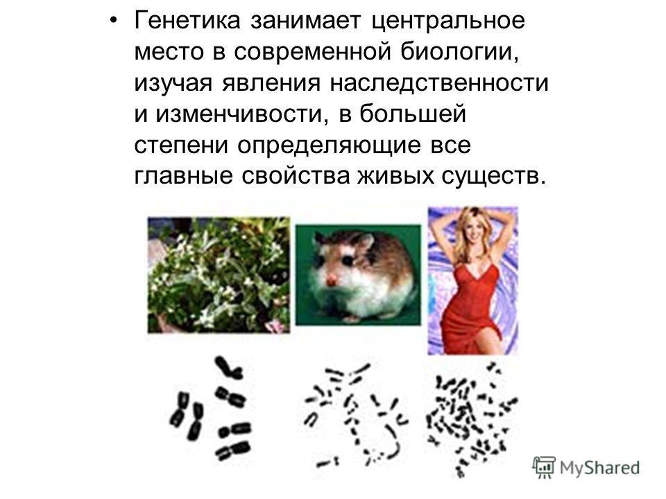 Генетика занимает центральное место в современной биологии, изучая явления наследственности и изменчивости, в большей степени определяющие все главные свойства живых существ.