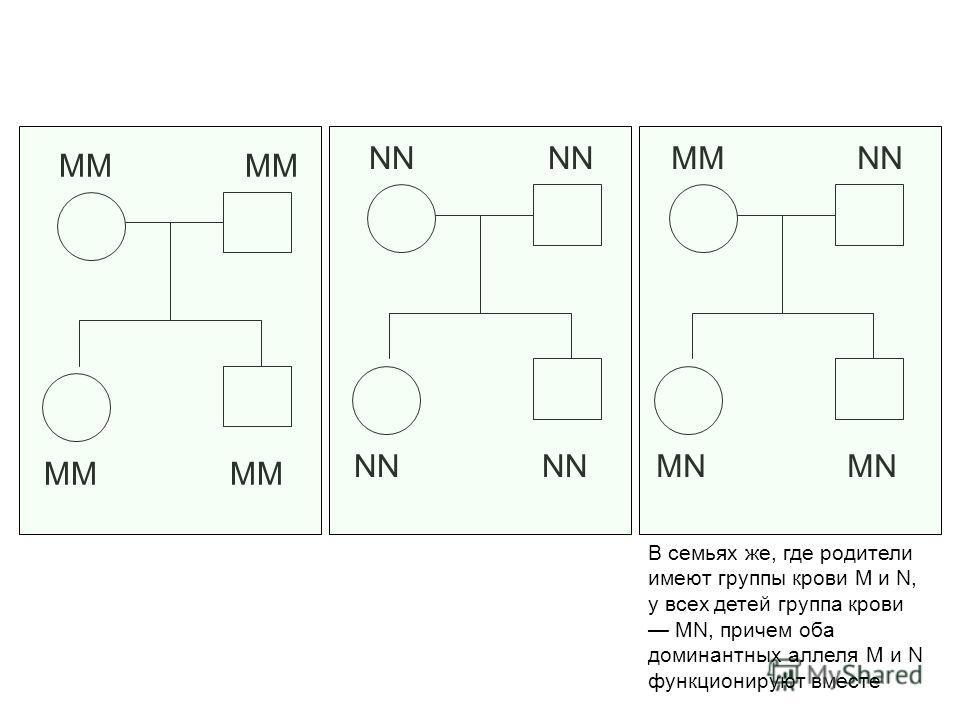 ММ NN MM NN MN В семьях же, где родители имеют группы крови М и N, у всех детей группа крови MN, причем оба доминантных аллеля М и N функционируют вместе