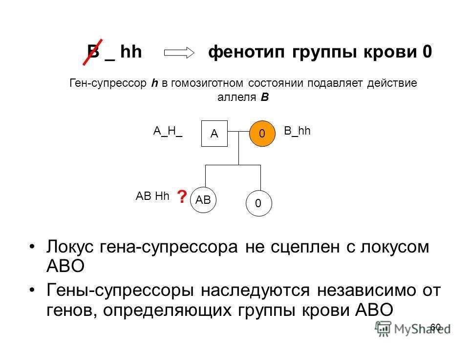 60 Локус гена-супрессора не сцеплен с локусом АВО Гены-супрессоры наследуются независимо от генов, определяющих группы крови АВО В _ hh фенотип группы крови 0 Ген-супрессор h в гомозиготном состоянии подавляет действие аллеля В А0 АВ ? А_Н_ В_hh AB H