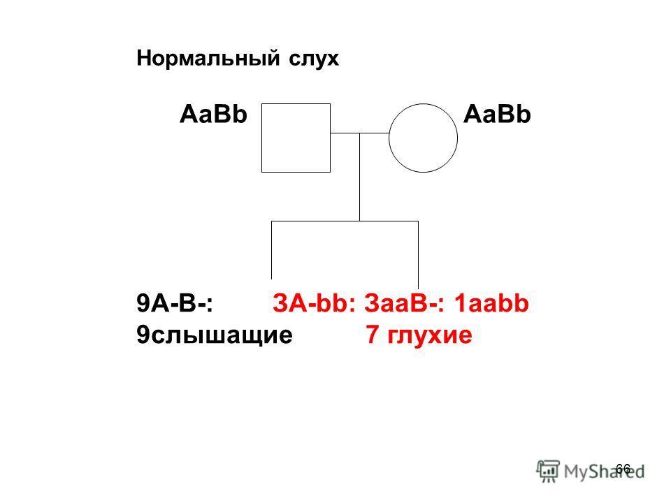 66 Нормальный слух AaBb AaBb 9A-B-: ЗА-bb: ЗааВ-: 1aabb 9слышащие 7 глухие