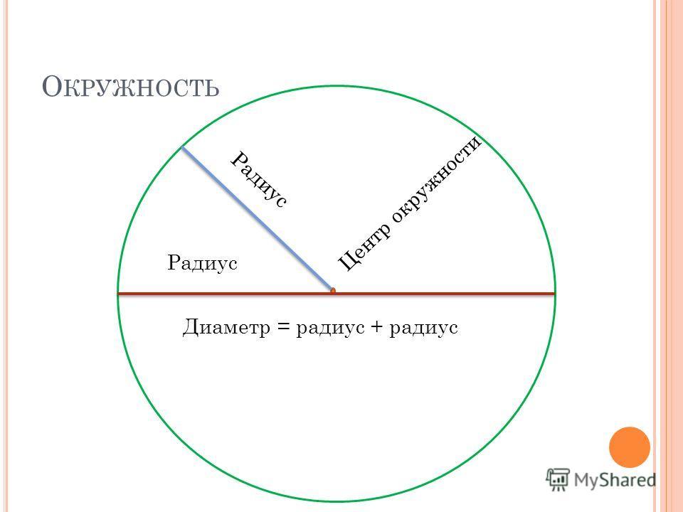 О КРУЖНОСТЬ Центр окружности Диаметр = радиус + радиус Радиус