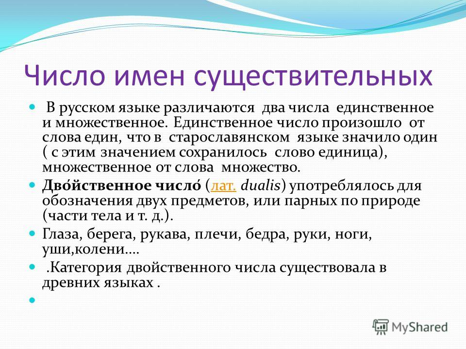 Число имен существительных В русском языке различаются два числа единственное и множественное. Единственное число произошло от слова един, что в старославянском языке значило один ( с этим значением сохранилось слово единица), множественное от слова