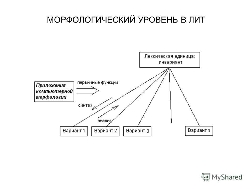 МОРФОЛОГИЧЕСКИЙ УРОВЕНЬ В ЛИТ