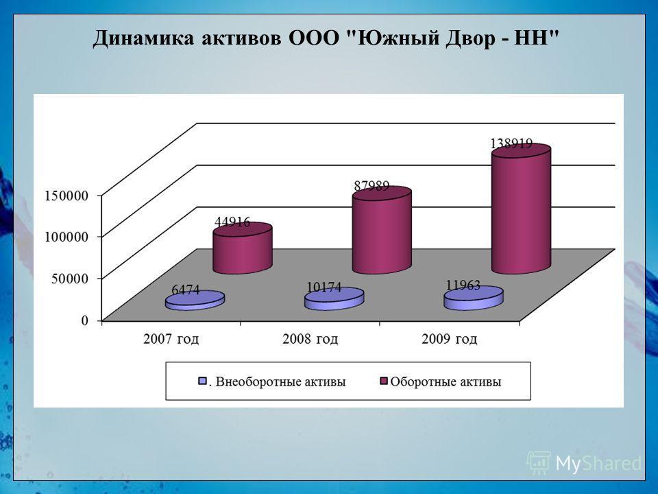 Динамика активов ООО Южный Двор - НН
