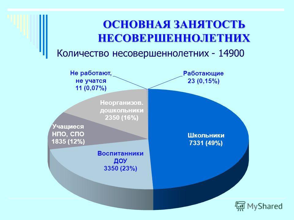 ОСНОВНАЯ ЗАНЯТОСТЬ НЕСОВЕРШЕННОЛЕТНИХ Количество несовершеннолетних - 14900