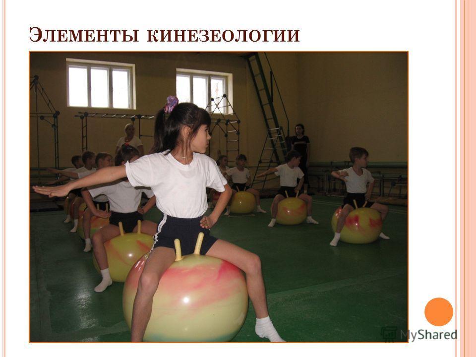 Э ЛЕМЕНТЫ КИНЕЗЕОЛОГИИ