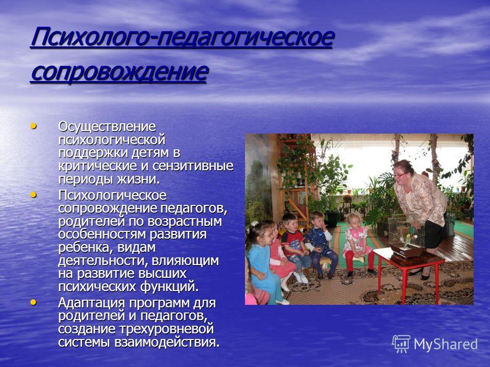 Психолого-педагогическое сопровождение Осуществление психологической поддержки детям в критические и сензитивные периоды жизни. Осуществление психологической поддержки детям в критические и сензитивные периоды жизни. Психологическое сопровождение пед