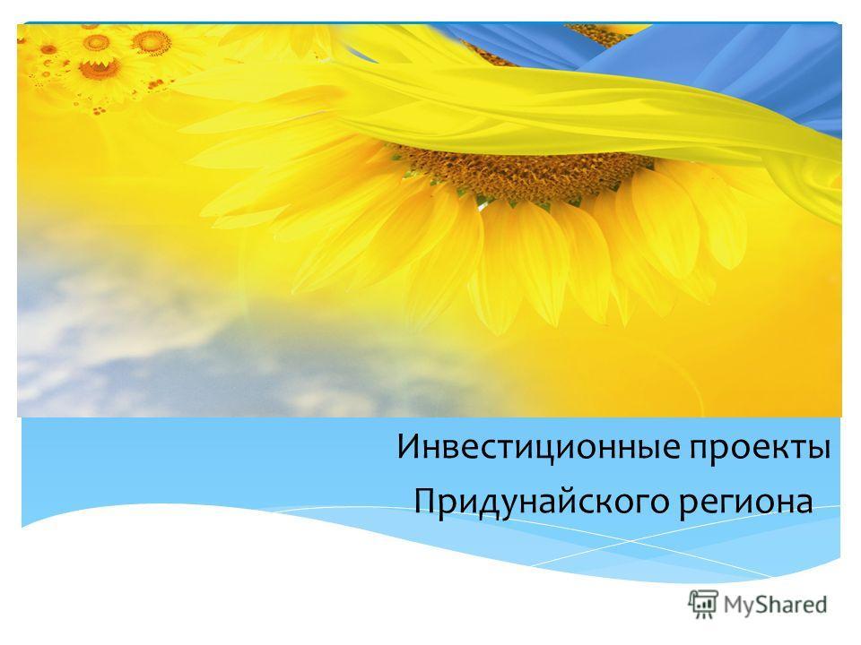 Инвестиционные проекты Придунайского региона
