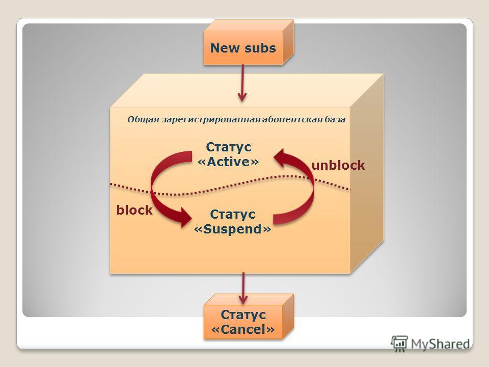 Статус «Active» Статус «Suspend» block unblock New subs Общая зарегистрированная абонентская база Статус «Cancel»
