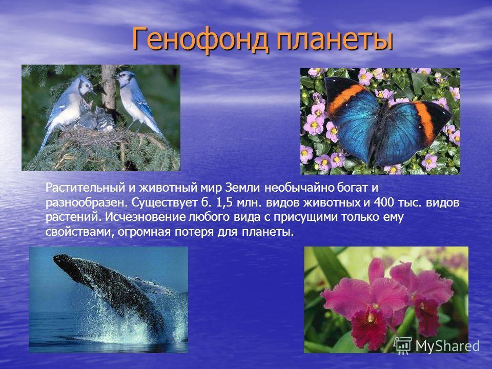 Г Генофонд планеты Растительный и животный мир Земли необычайно богат и разнообразен. Существует б. 1,5 млн. видов животных и 400 тыс. видов растений. Исчезновение любого вида с присущими только ему свойствами, огромная потеря для планеты.