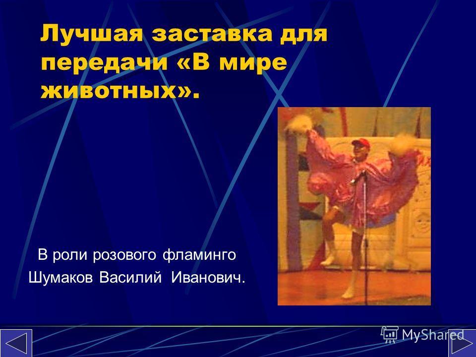 Лучшая заставка для передачи «В мире животных». В роли розового фламинго Шумаков Василий Иванович.
