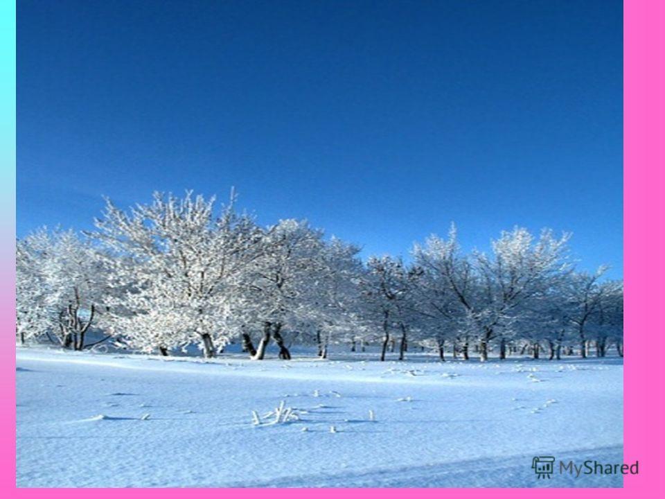 Другие времена года тоже воодушевляли поэта… Белая береза Под моим окном Принакрылась снегом, Точно серебром. На пушистых ветках Снежною каймой Распустились кисти Белой бахромой. И стоит береза В сонной тишине, И горят снежинки В золотом огне. А заря