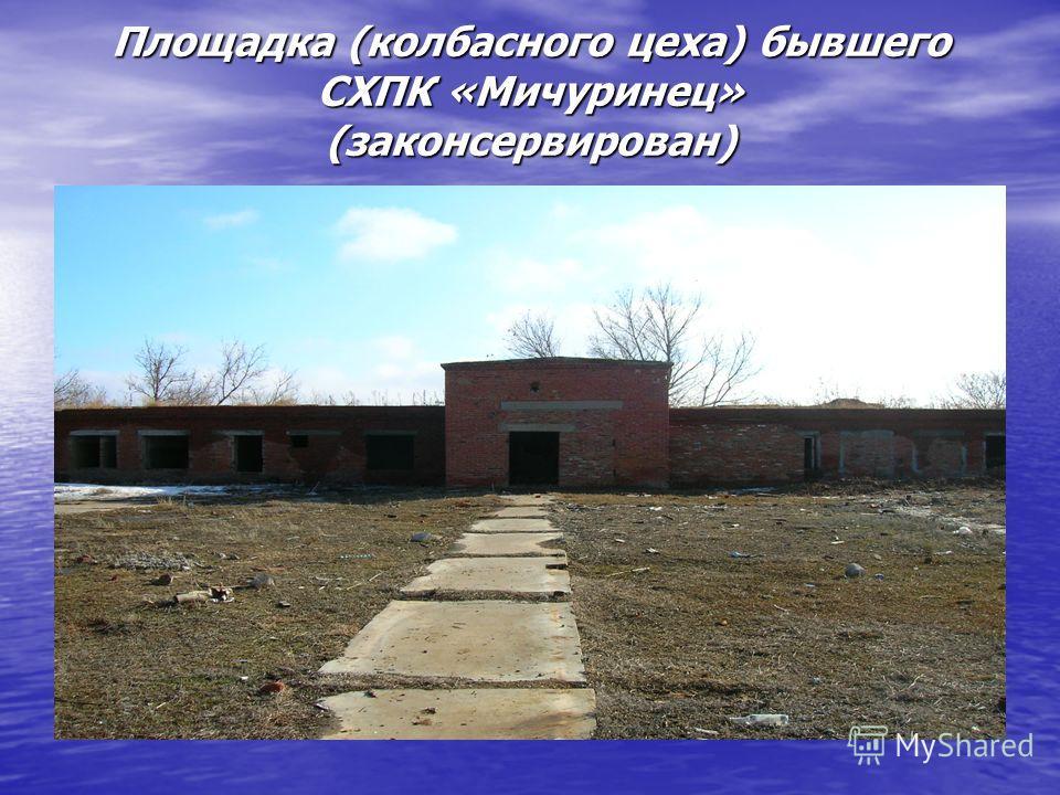 Площадка (колбасного цеха) бывшего СХПК «Мичуринец» (законсервирован)