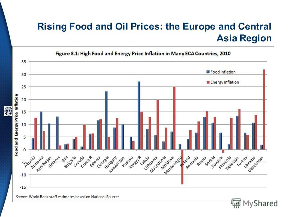 Rising Food and Oil Prices: the Europe and Central Asia Region