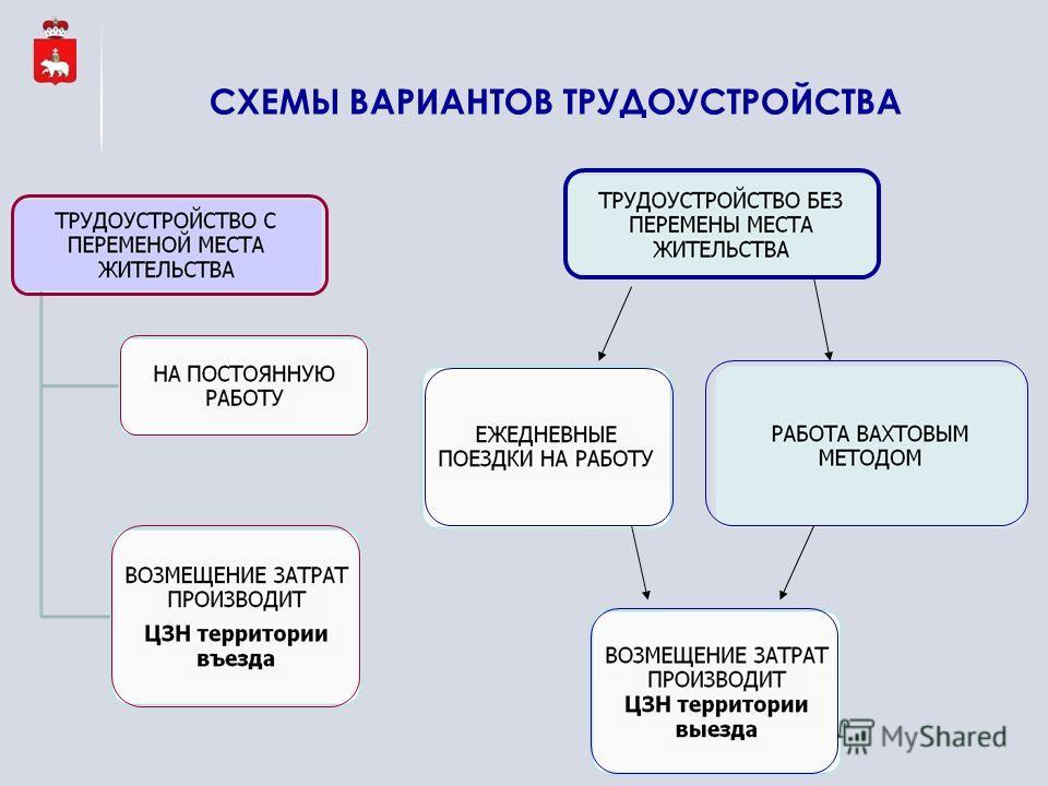 СХЕМЫ ВАРИАНТОВ ТРУДОУСТРОЙСТВА