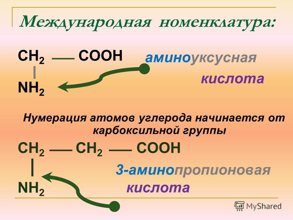 Международная номенклатура: CH 2 COOH NH 2 Нумерация атомов углерода начинается от карбоксильной группы CH 2 CH 2 COOH NH 2 аминоуксусная кислота 3-аминопропионовая кислота