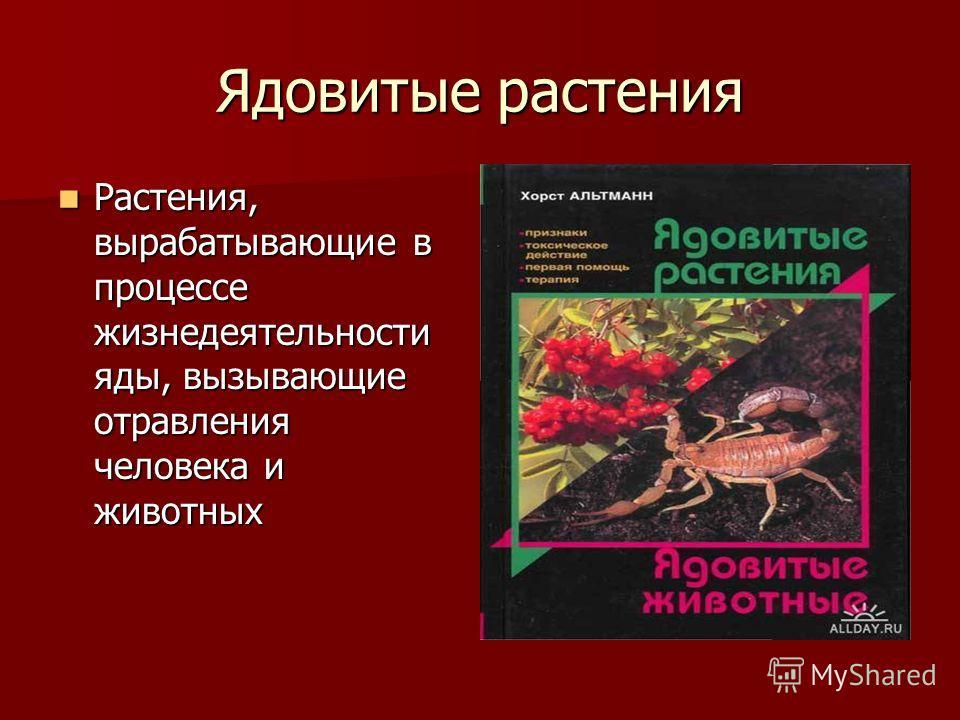 Ядовитые растения Растения, вырабатывающие в процессе жизнедеятельности яды, вызывающие отравления человека и животных Растения, вырабатывающие в процессе жизнедеятельности яды, вызывающие отравления человека и животных