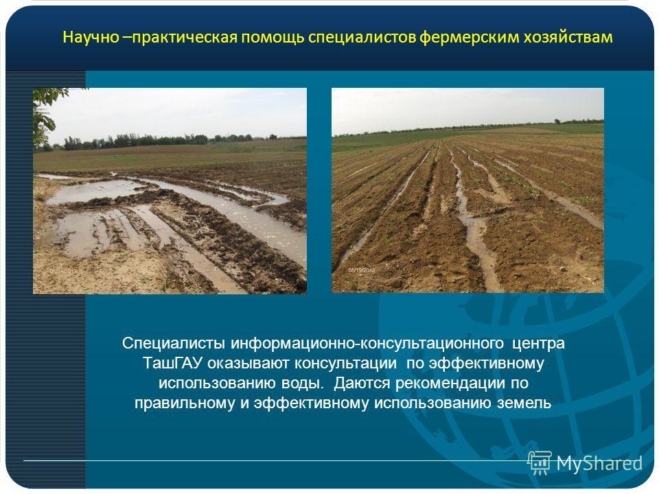Специалисты информационно-консультационного центра ТашГАУ оказывают консультации по эффективному использованию воды. Даются рекомендации по правильному и эффективному использованию земель Научно –практическая помощь специалистов фермерским хозяйствам