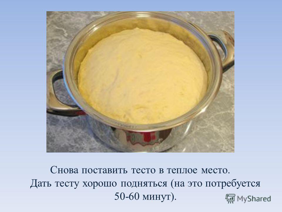 Снова поставить тесто в теплое место. Дать тесту хорошо подняться (на это потребуется 50-60 минут).