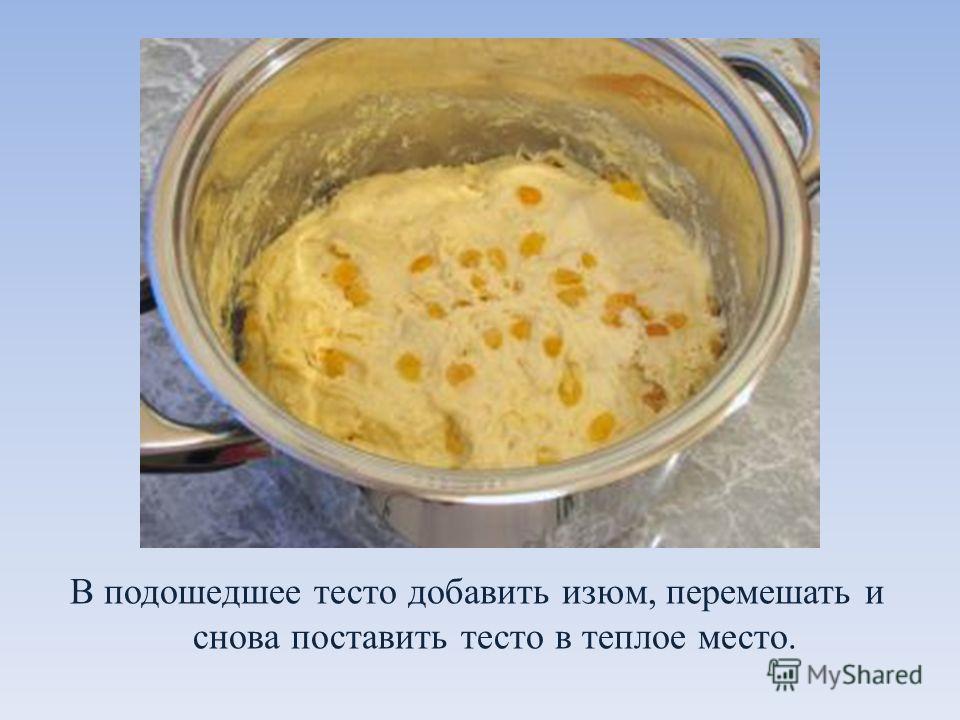 В подошедшее тесто добавить изюм, перемешать и снова поставить тесто в теплое место.