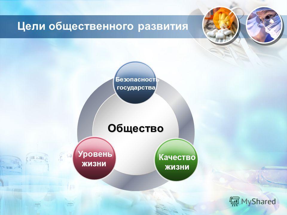 Цели общественного развития Общество Безопасность государства Уровень жизни Качество жизни