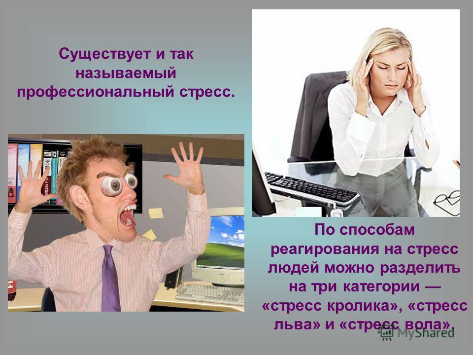 Существует и так называемый профессиональный стресс. По способам реагирования на стресс людей можно разделить на три категории «стресс кролика», «стресс льва» и «стресс вола».