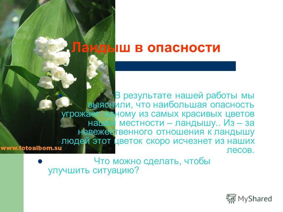 В результате нашей работы мы выяснили, что наибольшая опасность угрожает одному из самых красивых цветов нашей местности – ландышу.. Из – за невежественного отношения к ландышу людей этот цветок скоро исчезнет из наших лесов. Что можно сделать, чтобы