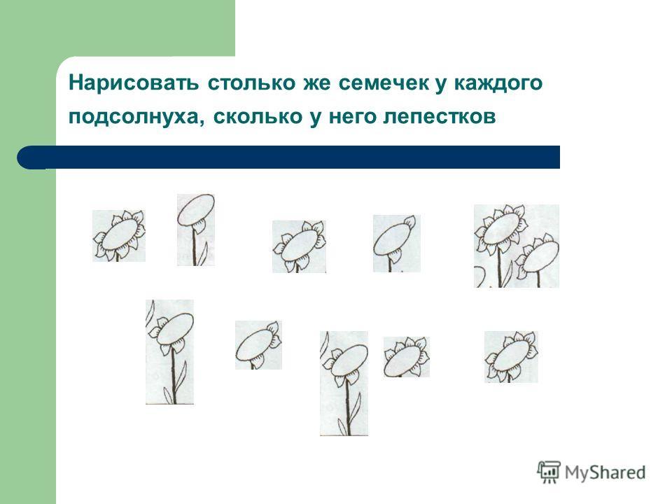 Нарисовать столько же семечек у каждого подсолнуха, сколько у него лепестков