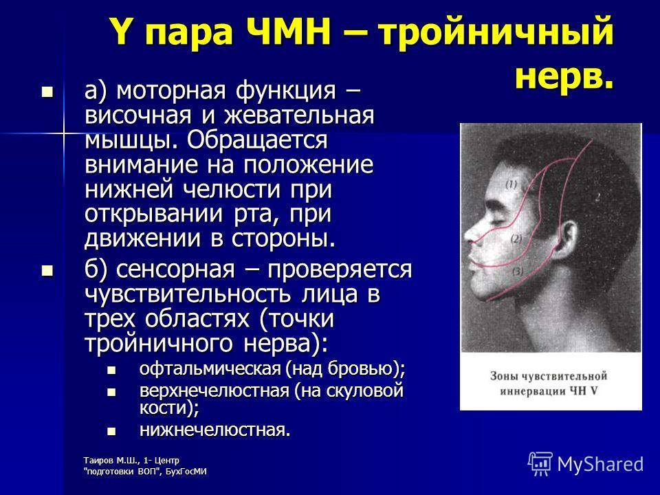 Y пара ЧМН – тройничный нерв. а) моторная функция – височная и жевательная мышцы. Обращается внимание на положение нижней челюсти при открывании рта, при движении в стороны. а) моторная функция – височная и жевательная мышцы. Обращается внимание на п