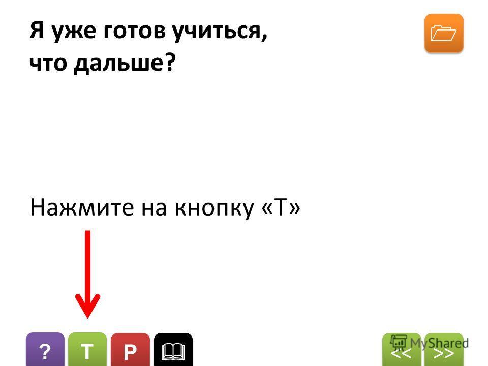 ? ? T T P P >>