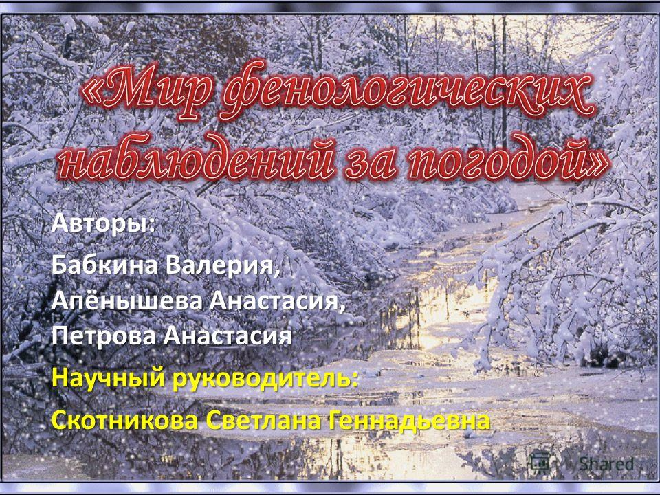 Авторы: Бабкина Валерия, Апёнышева Анастасия, Петрова Анастасия Научный руководитель: Скотникова Светлана Геннадьевна
