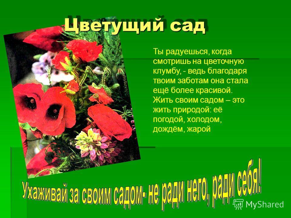 Цветущий сад Ты радуешься, когда смотришь на цветочную клумбу, - ведь благодаря твоим заботам она стала ещё более красивой. Жить своим садом – это жить природой: её погодой, холодом, дождём, жарой