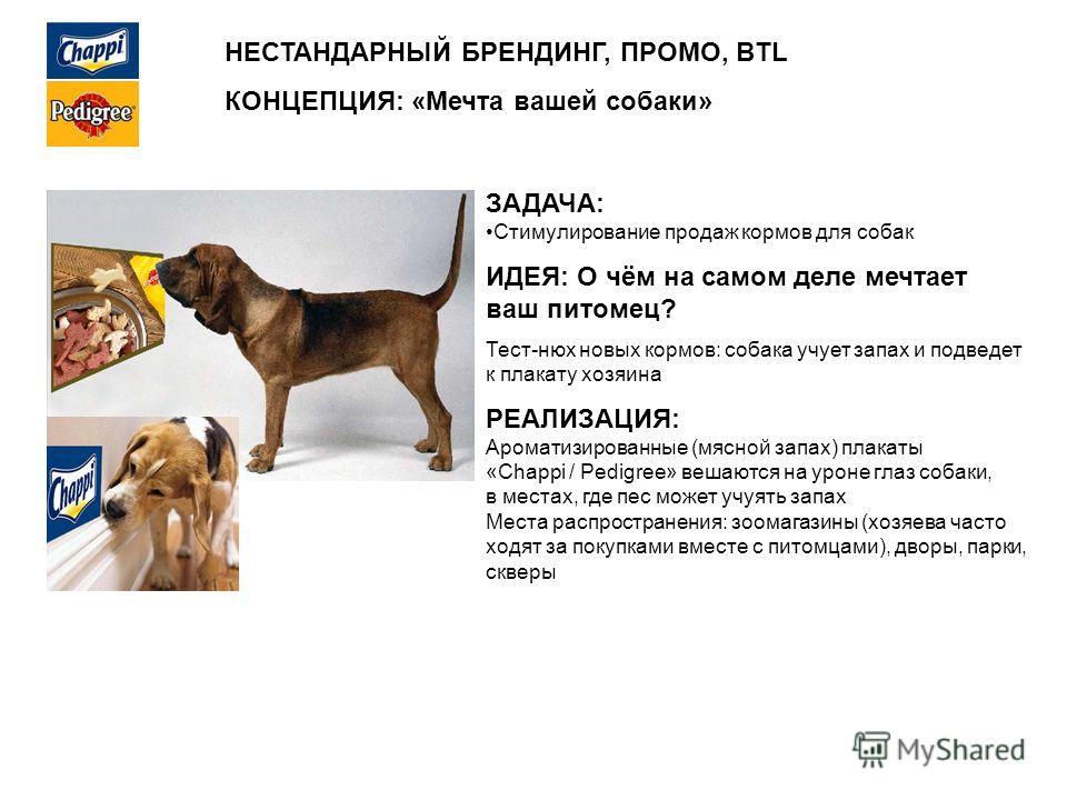 НЕСТАНДАРНЫЙ БРЕНДИНГ, ПРОМО, BTL КОНЦЕПЦИЯ: «Мечта вашей собаки» ЗАДАЧА: Стимулирование продаж кормов для собак ИДЕЯ: О чём на самом деле мечтает ваш питомец? Тест-нюх новых кормов: собака учует запах и подведет к плакату хозяина РЕАЛИЗАЦИЯ: Аромати