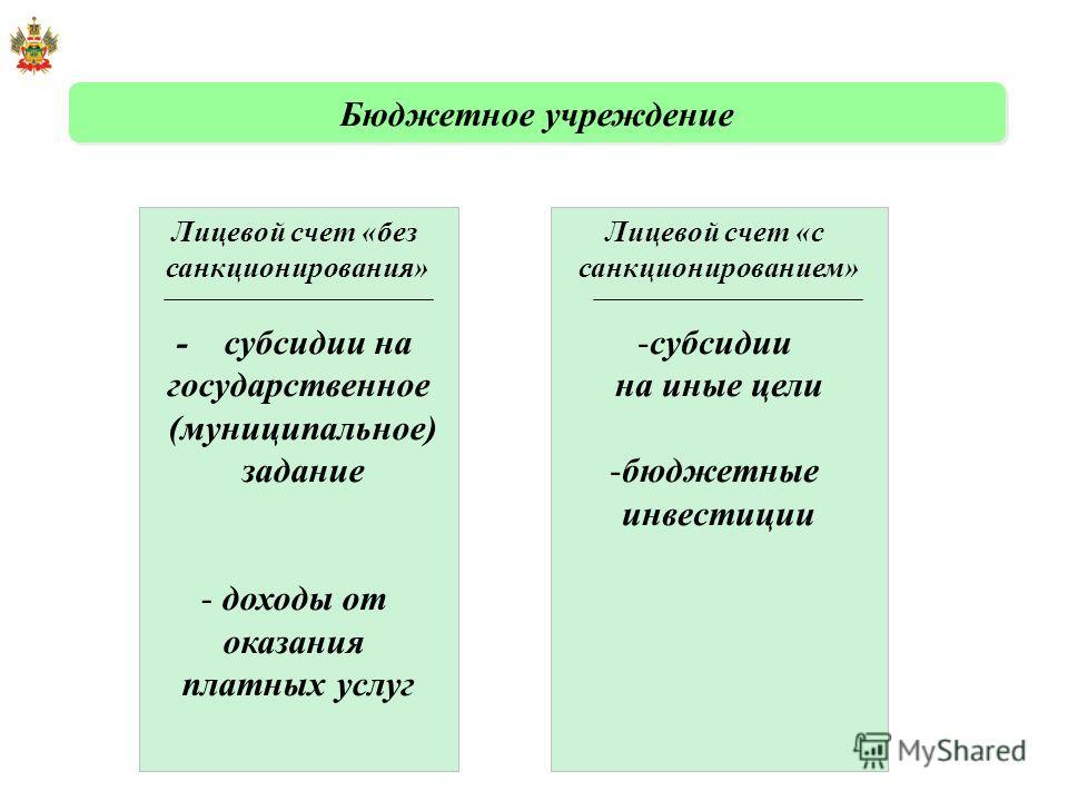 Лицевой счет «с санкционированием» -субсидии на иные цели -бюджетные инвестиции Лицевой счет «без санкционирования» - субсидии на государственное (муниципальное) задание - доходы от оказания платных услуг Бюджетное учреждение