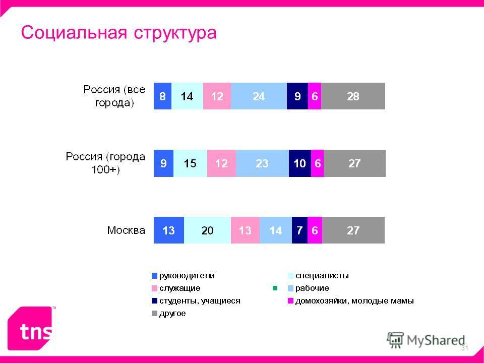 31 Социальная структура