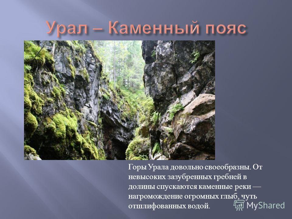 Горы Урала довольно своеобразны. От невысоких зазубренных гребней в долины спускаются каменные реки нагромождение огромных глыб, чуть отшлифованных водой.