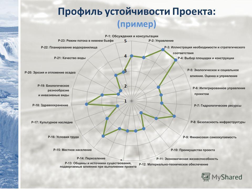 Профиль устойчивости Проекта: (пример)