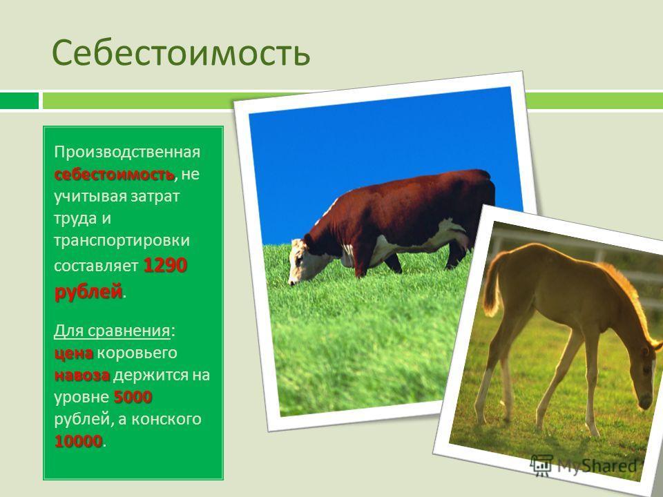 Себестоимость себестоимость 1290 рублей Производственная себестоимость, не учитывая затрат труда и транспортировки составляет 1290 рублей. цена навоза 5000 10000 Для сравнения : цена коровьего навоза держится на уровне 5000 рублей, а конского 10000.