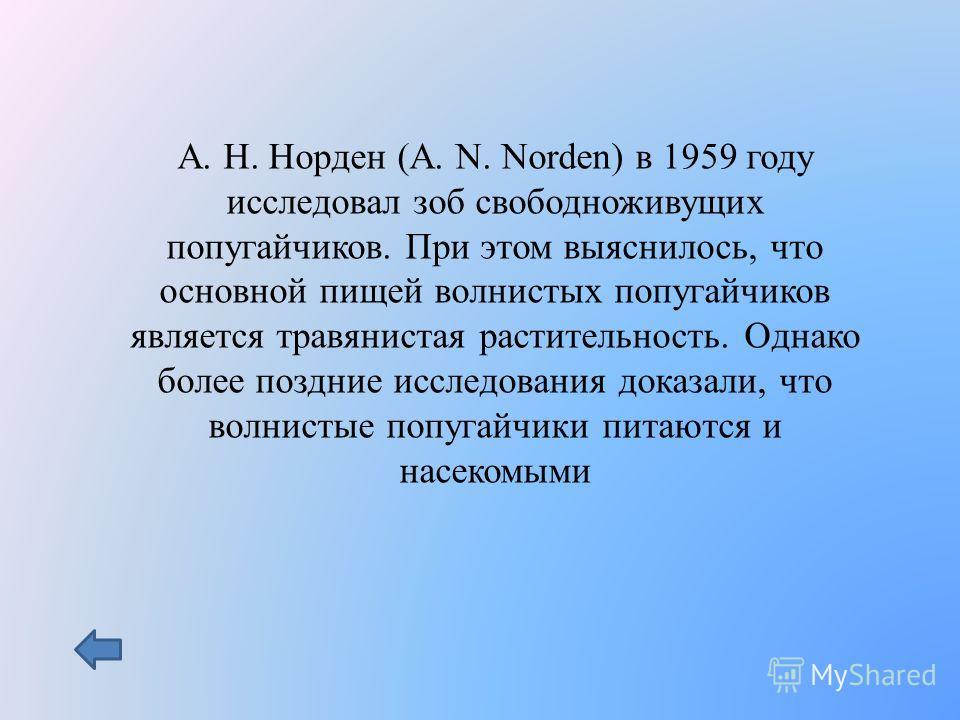 А. Н. Норден (A. N. Norden) в 1959 году исследовал зоб свободноживущих попугайчиков. При этом выяснилось, что основной пищей волнистых попугайчиков является травянистая растительность. Однако более поздние исследования доказали, что волнистые попугай