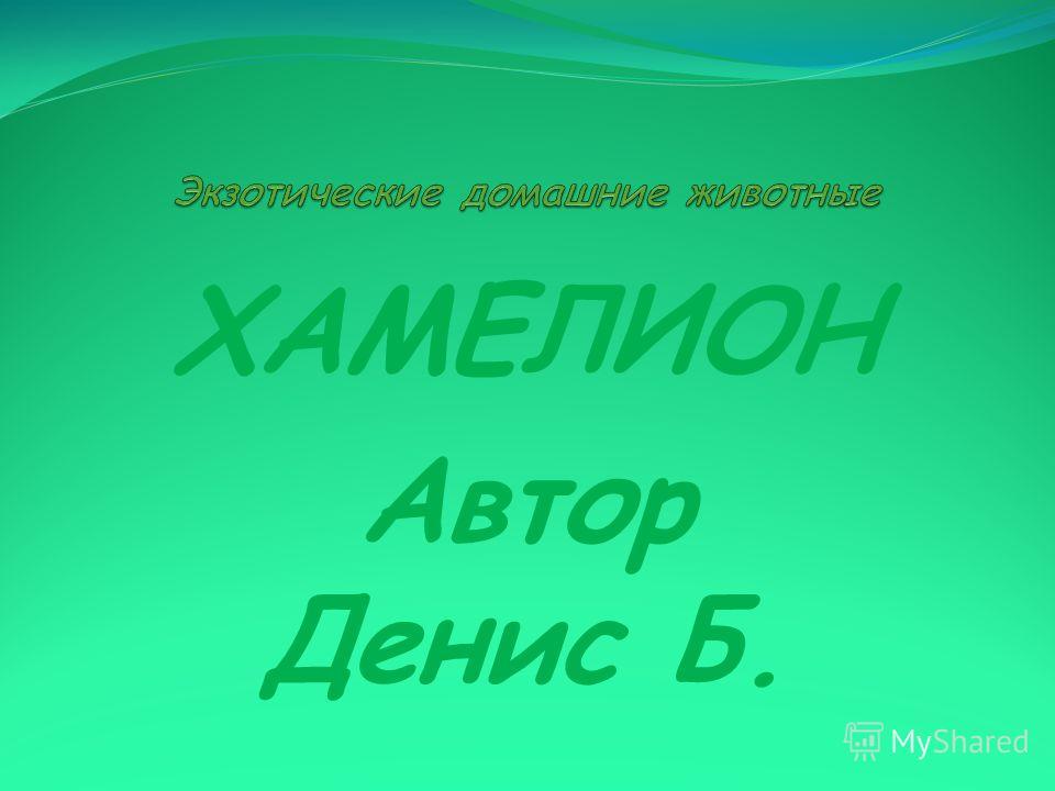ХАМЕЛИОН Автор Денис Б.