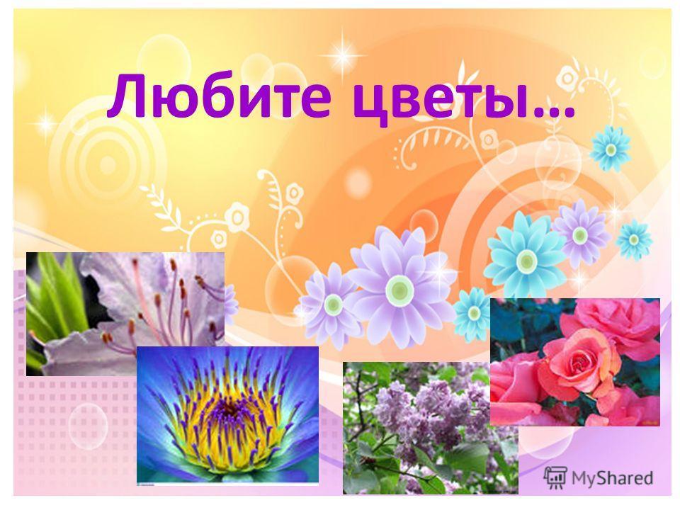 Любите цветы…