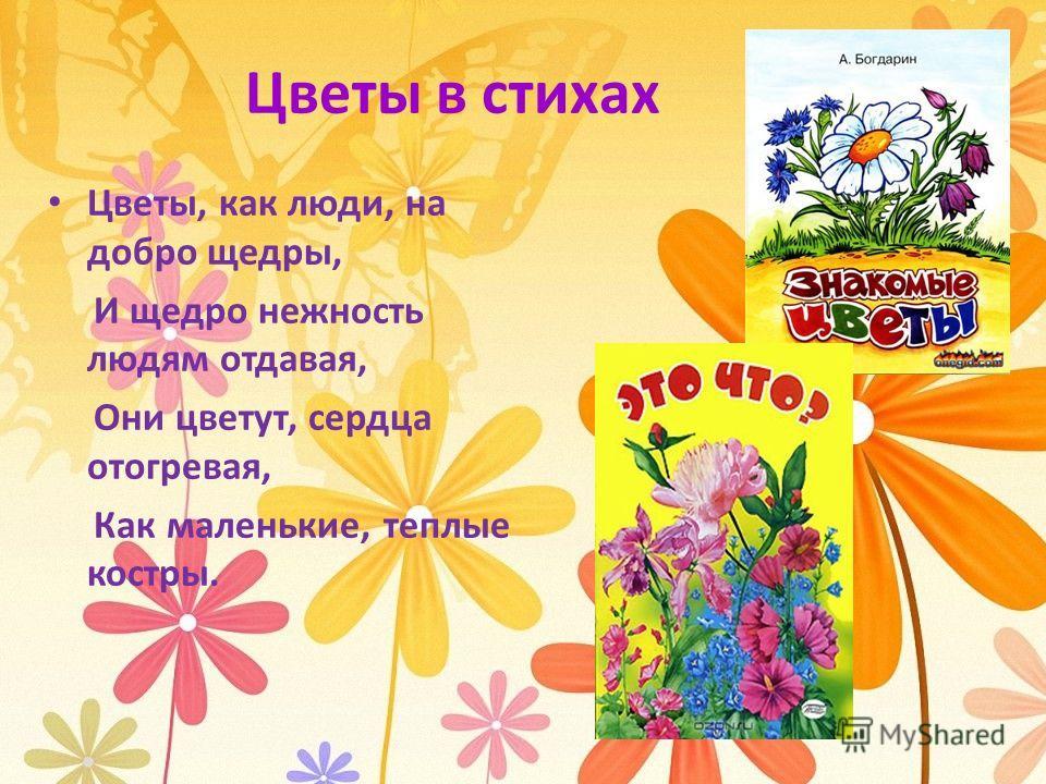 Цветы в стихах Цветы, как люди, на добро щедры, И щедро нежность людям отдавая, Они цветут, сердца отогревая, Как маленькие, теплые костры.