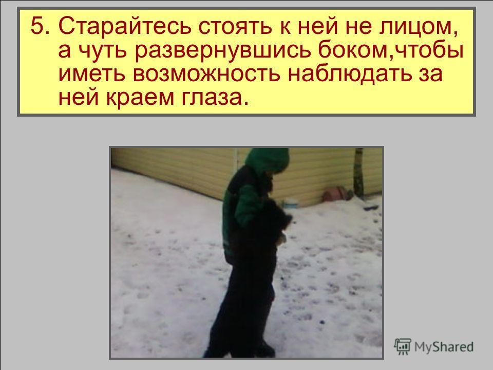 4. Не поворачивайтесь к собаке спиной.
